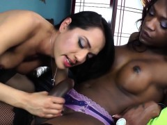 Horny Trans Beauties Enjoy Interracial Sex